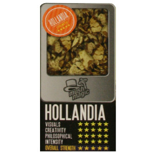 hollandia-magic-truffles